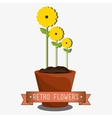 Flowers graphic design vector image