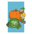garden gnome with vegetables vector image