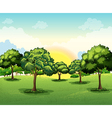 Tall trees vector image vector image