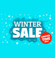 winter special sale concept banner flat style vector image vector image