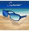 01 Sunglasses Sea vector image vector image