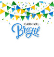 carnival brazil party flags and text image vector image