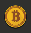 cartoon golden bitcoin coin vector image