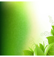 Green Background With Leafs And Grass vector image