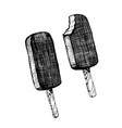 ice cream chocolate popsicle on a stick vector image