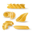 pasta types and forms realistic set vector image vector image