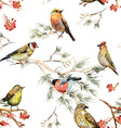 seamless texture of forest birds watercolor vector image vector image