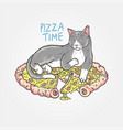 cat pizza sleep vector image vector image