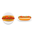 delicious hot dog on plate side and top view vector image