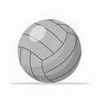 gray volley ball on white vector image