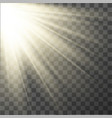 light effect sun rays vector image vector image