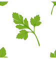 parsley seasoning seamless pattern salad or dish vector image vector image