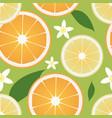 seamless pattern lemon and orange slices vector image vector image
