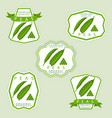 the peas vector image vector image