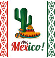 viva mexico - cactus maracas and hat vector image