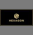 aa hexagon logo design inspiration vector image vector image