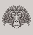 baboon monkey face doodle vector image vector image
