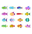 cute fish set vector image