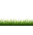 green grass border set on white background vector image vector image
