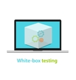 white box testing software application development vector image vector image