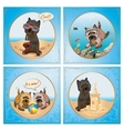Terrier Summer Collection vector image