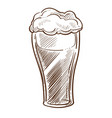 beer with foam in glass isolated sketch alcohol vector image vector image