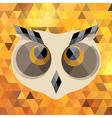 Creative owl vector image
