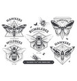 emblems with bugs vector image vector image