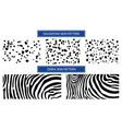 pattern skin for textile design set skin vector image vector image