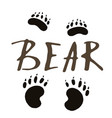 the paw print of a bear vector image