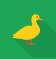 duck icon set of great flat icons design vector image vector image