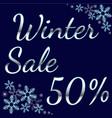 elegant silver winter lettering design winter sale vector image