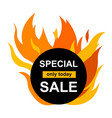 square banner with special sale vector image vector image