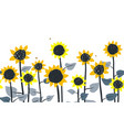 sunflowers horizontal border seamless vector image