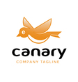 Canary Design vector image
