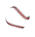 baseball or softball laces stiching seams vector image