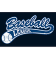 Blue baseball league banner with ball vector image vector image