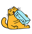 cartoon orange cat is drinking milk isolated vector image vector image