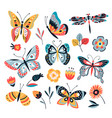 color drawing butterfly butterflies moth and vector image vector image