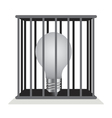 Dark light bulb in a cage vector image vector image