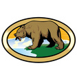 grizzly bear at the nature vector image vector image