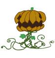 halloween pumpkin plant cartoon vector image vector image