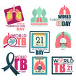 lungs and stethoscope world tuberculosis day vector image vector image
