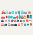 set women bags and travel luggage vector image vector image