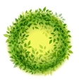 Beautiful green wreath vector image vector image