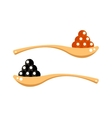 Black and red caviar in wooden spoon isolated on vector image vector image