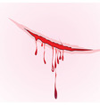 Claws scratch blood drops background vector image vector image