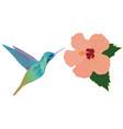 hummingbird flower vector image vector image
