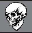 skull black 01 vector image vector image