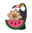 toucan watermelon and flower tropical summer vector image vector image
